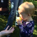 Bushels of Fall Fun at the Montgomery Orchard